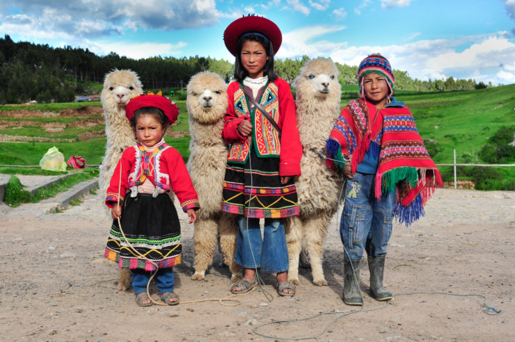 Joro Experiences Peru