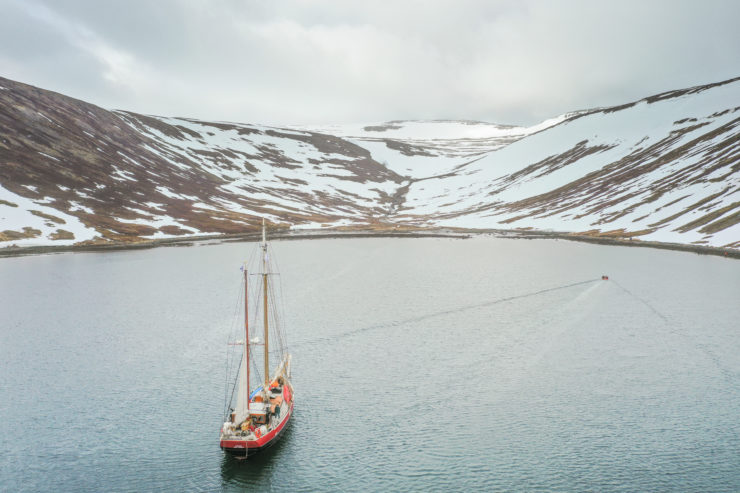 Joro Iceland