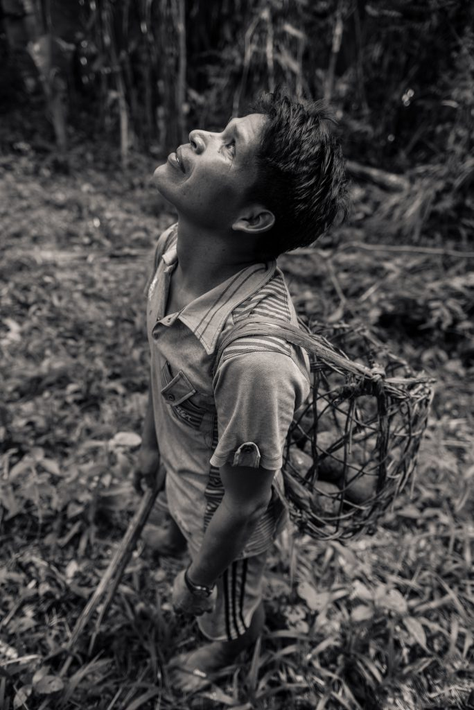 A man stares into the jungle canopy
